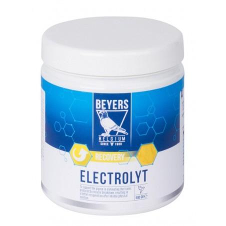Suplemento para palomas Electrolyt Beyers 500gr