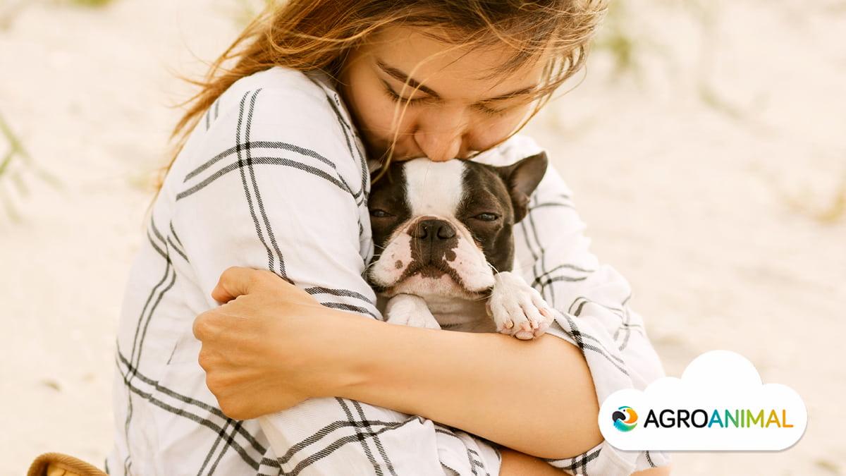 Como cuidar a tus mascotas en verano