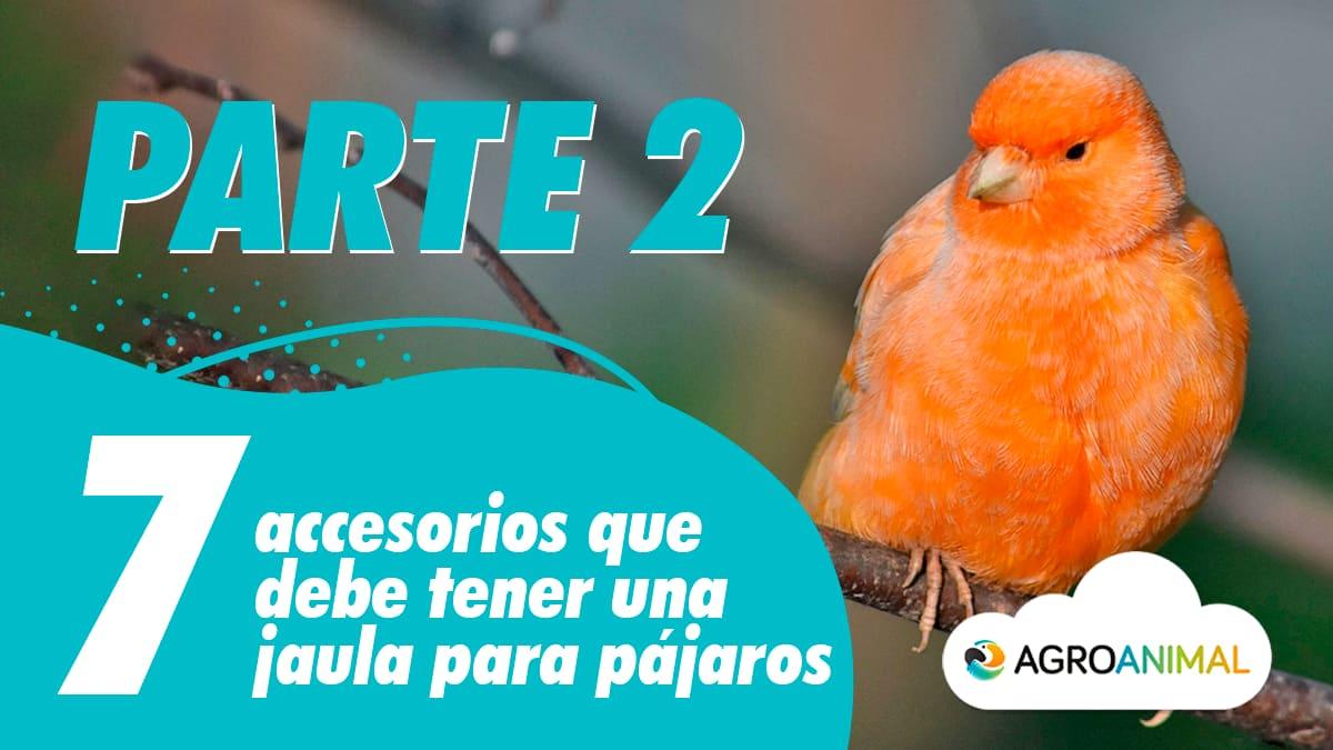 7 accesorios 7 accesorios jaula para pájaros 2