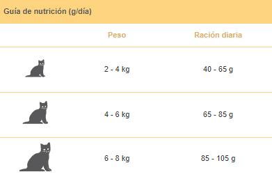 Guía nutricional gato